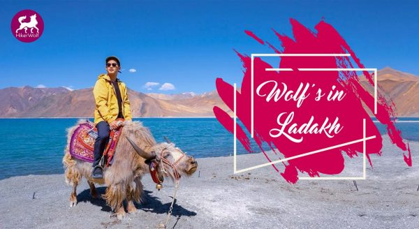 HikerWolf - Trip to Ladakh