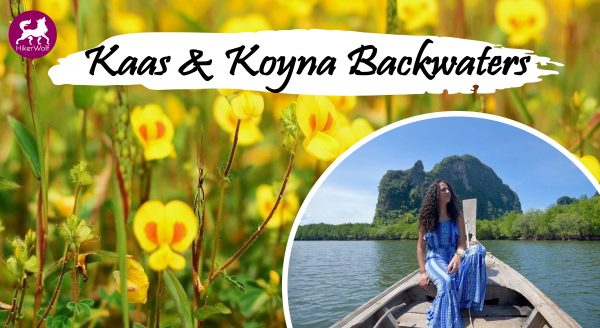 Kaas and Koyna Backwaters